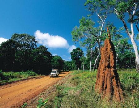 NT Road Trip